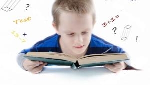 Успеваемость в начальной школе и телефон