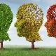 Виды слабоумия или деменции